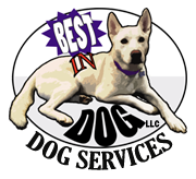 Best In Dog logo